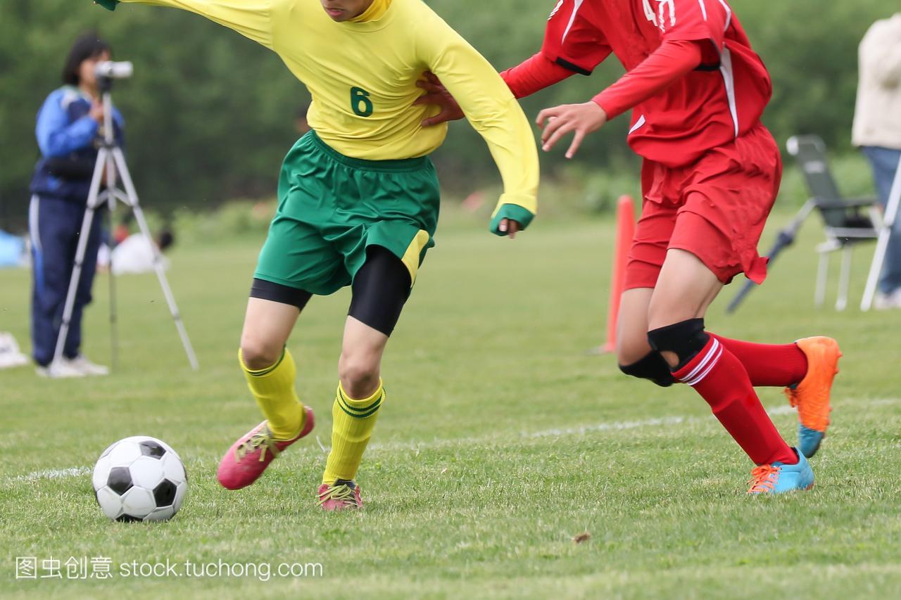 olorimage,陆地,Ground,英式足球,soccer,v陆地,飞镖叶的树图片