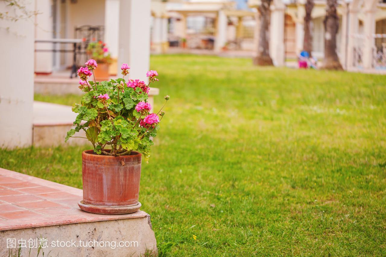 鲜花乡村别墅在托斯卡纳风格与陶瓷,别墅罐幢一多少贵阳门廊钱图片