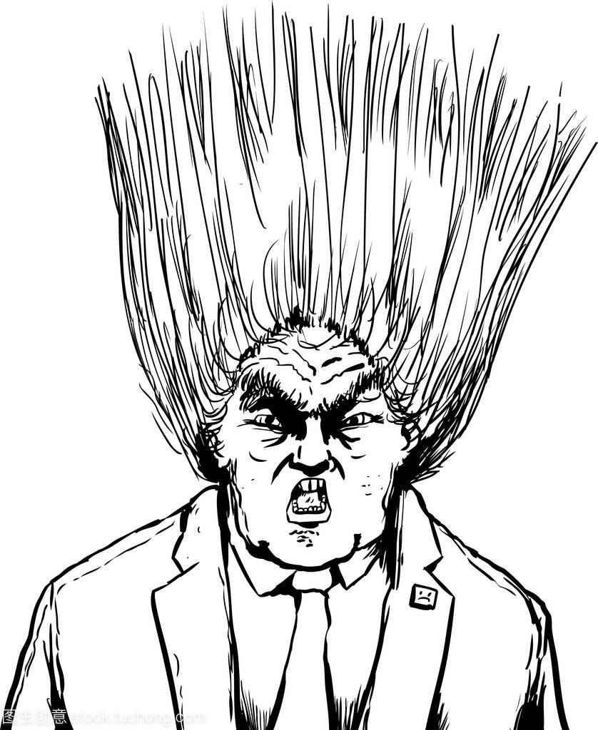 吹出来的唐纳德特朗普的发型扎高马尾抖音图片