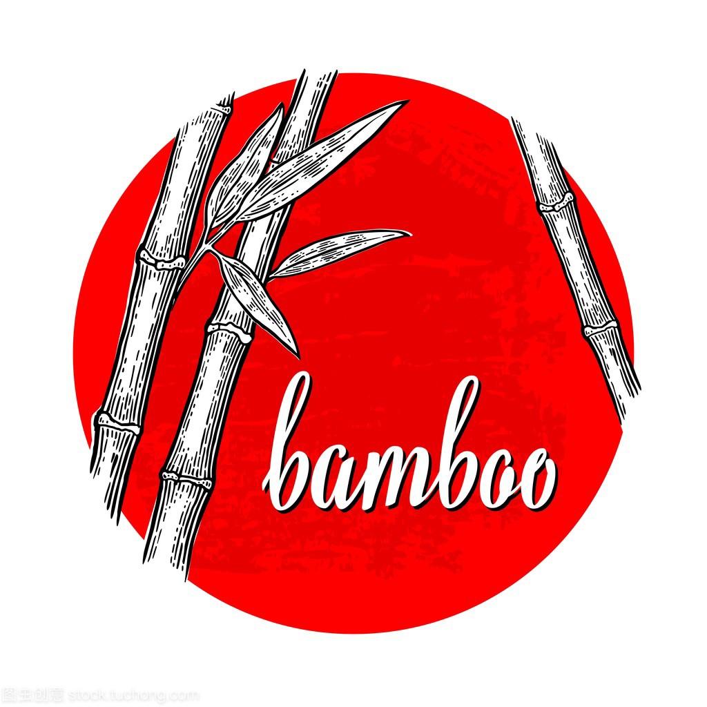 竹树白色的轮廓和上图纸红色的手工圆圈。黑色室内设计轮廓怎么看图片