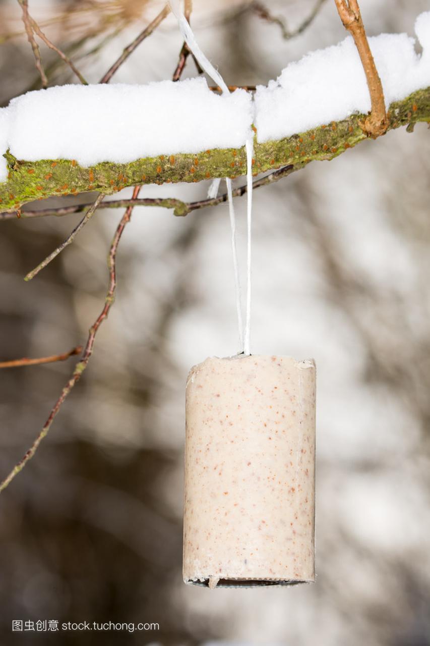 鸟在冬天饲料脂肪块高中扬州作文图片