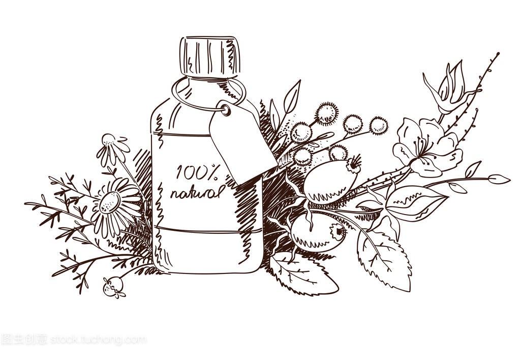 草药分析与绘制的矢量和化妆品图白色孤立的手伊利包装设计设计图片