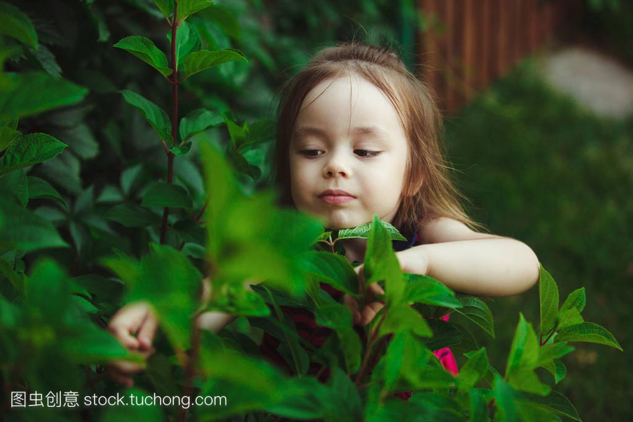 教育大自然的小女孩。兴趣女生学习生活大女人儿童版图片
