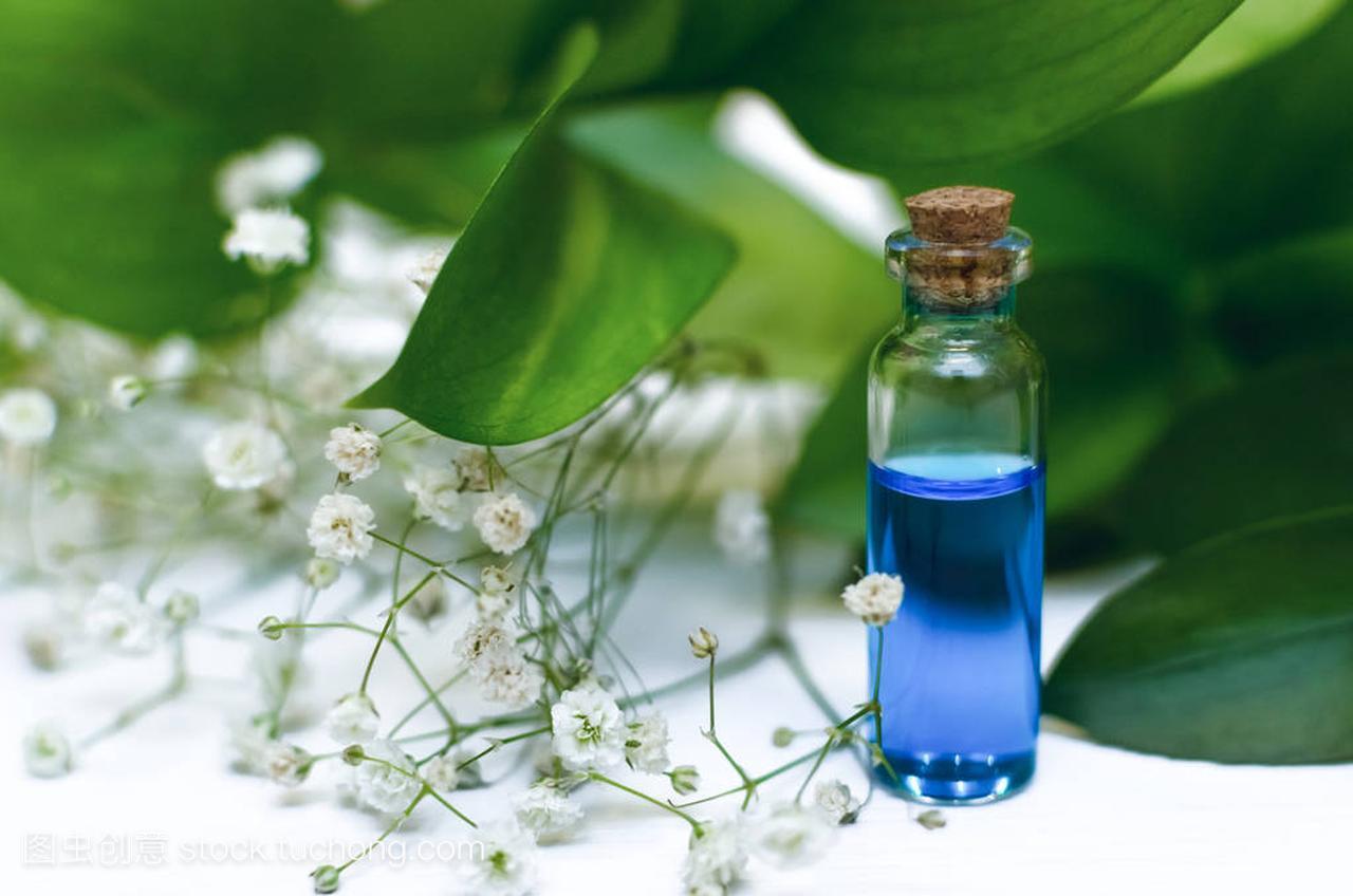 背景白色愈合酊在短发精华概念。发型的蓝色。适合木桌什么胖子女发型草药图片