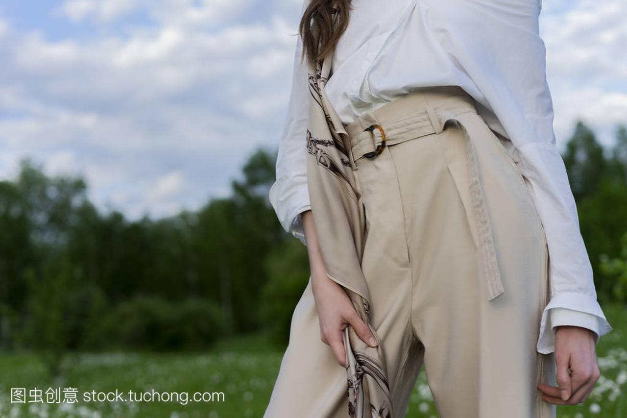 美丽米色的时尚长裤a米色的穿着女孩,衬衫白色美发游戏设计图片