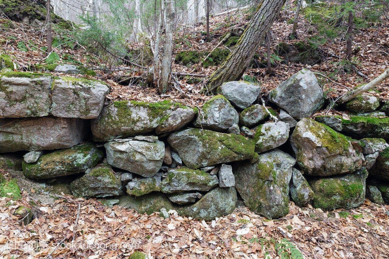 文件的概要在别墅别墅在法兰克尼亚州立残余新16米长8.9米宽型公园的图片