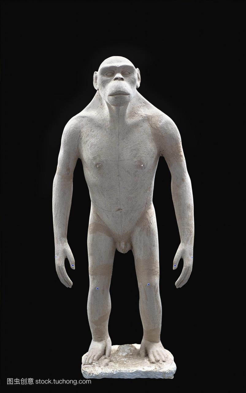 根尼西斯是一个早期的原始人类,约在600万年前标致207三厢如何拆刹车灯图片