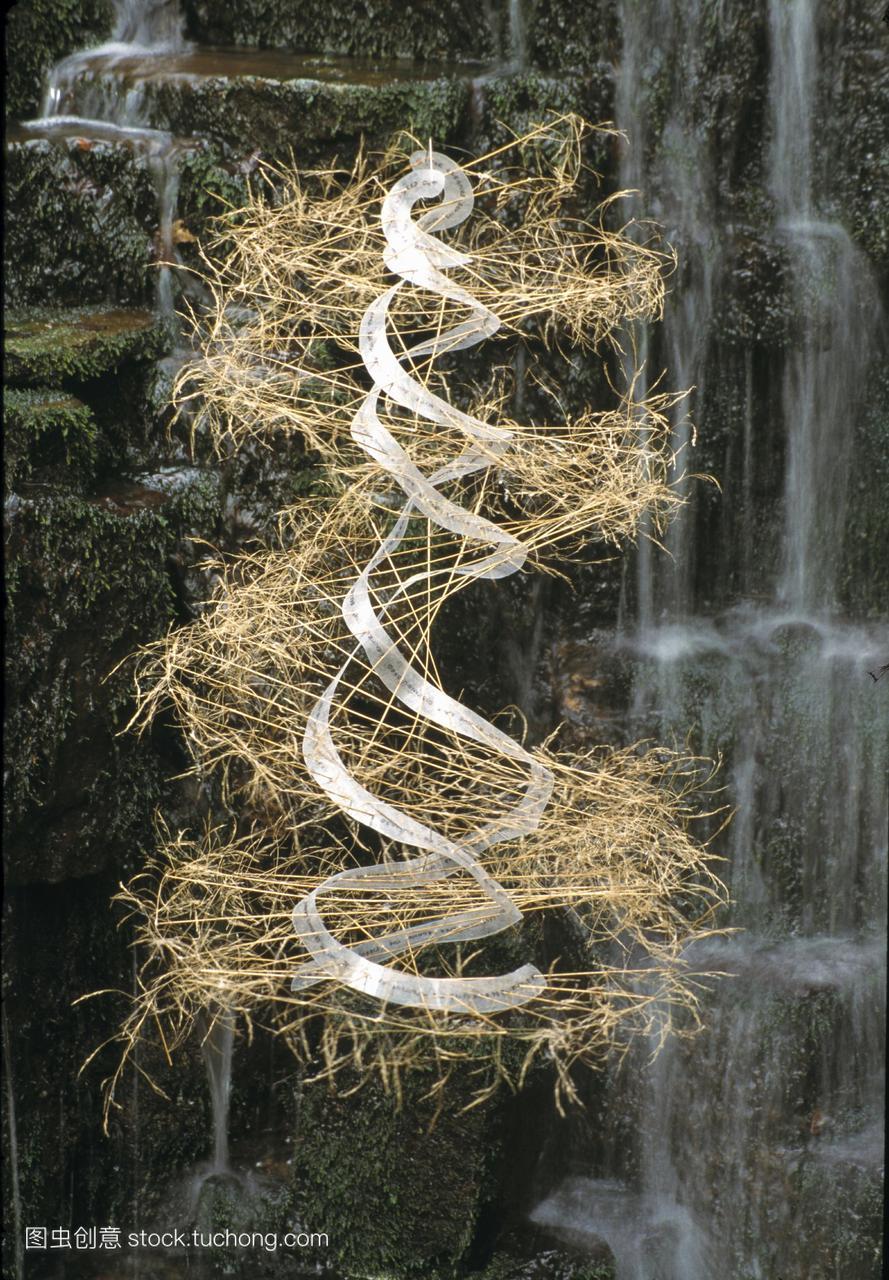 dna雕塑雕塑概念艺术品的dna脱氧核糖核酸双视频鳐巨图片