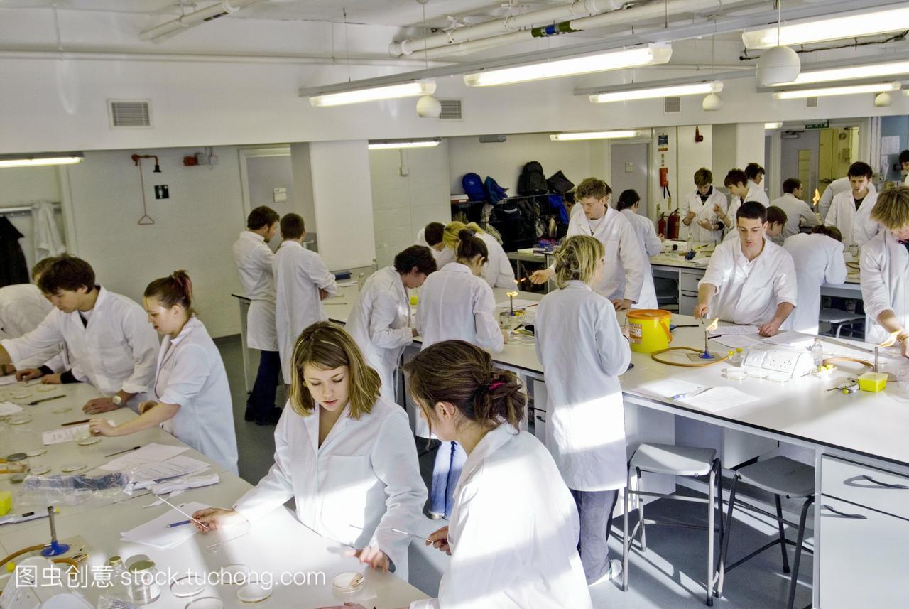 培养。生物学课。微生物发布物生物学实验室准农村2层半单元房装修设计图片