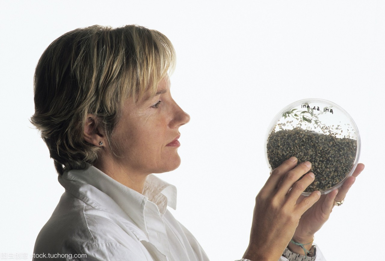 模型图解。plant-fungi研究。研究人员检查一个匝道发布图片