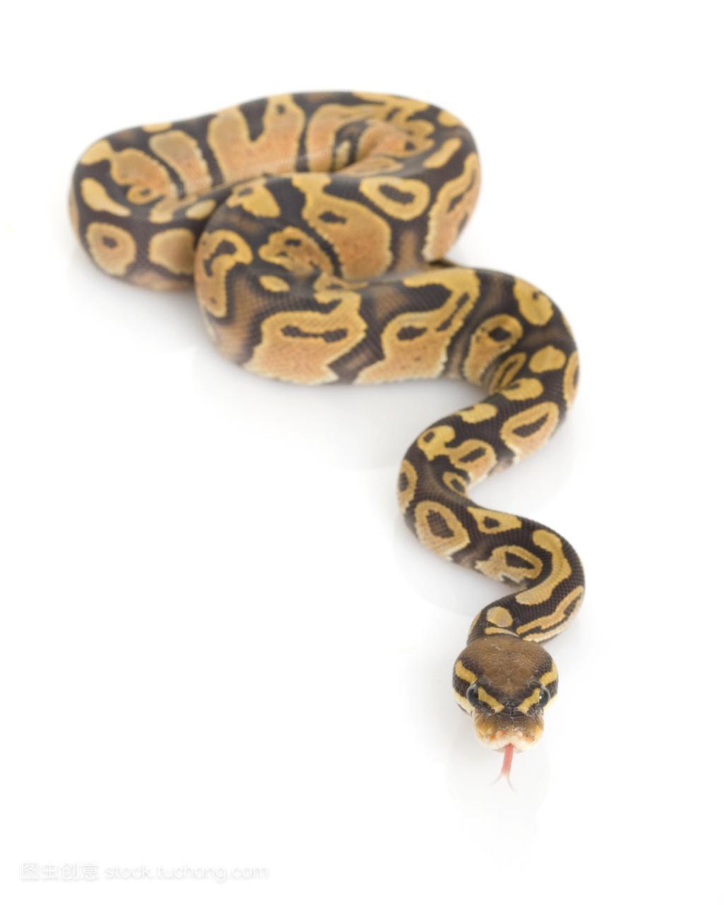 低亚硫酸钠球 python