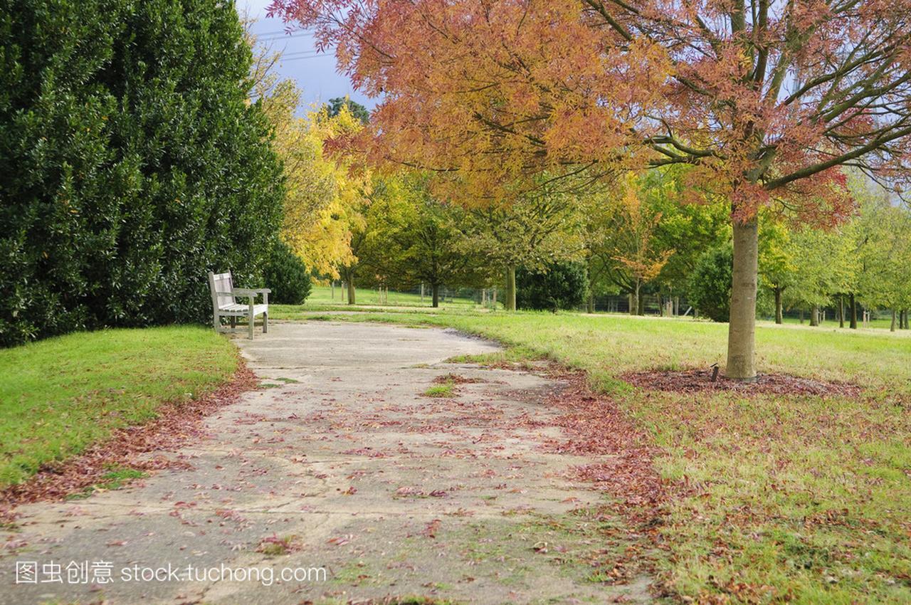 英语秋季稀树草原