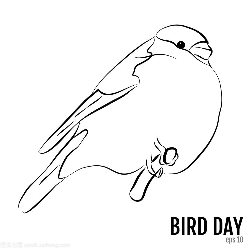 国鸟天,矢量图