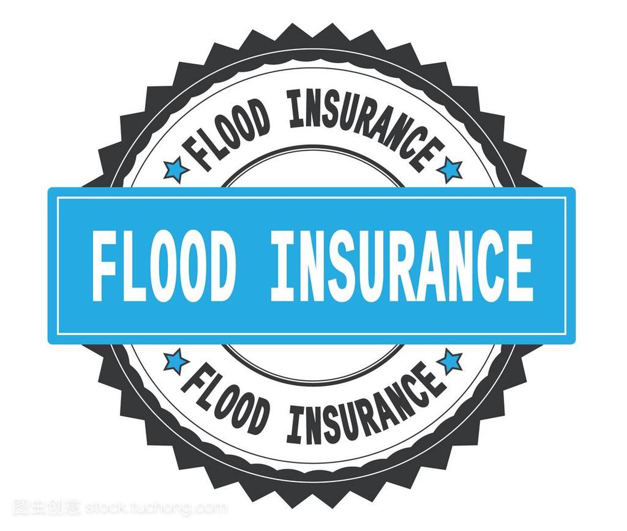 洪水保险文本在灰色和青色圆的邮票, 以字形字