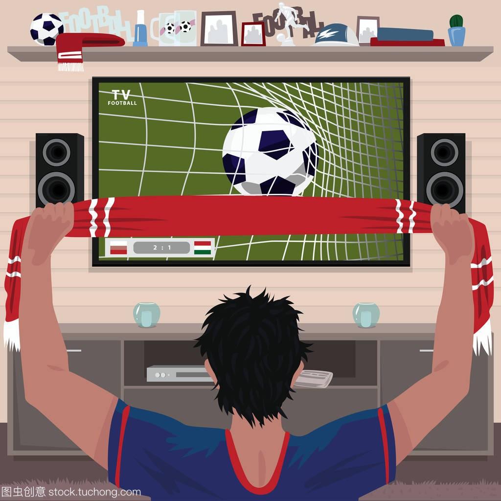 足球迷为进球而欣喜