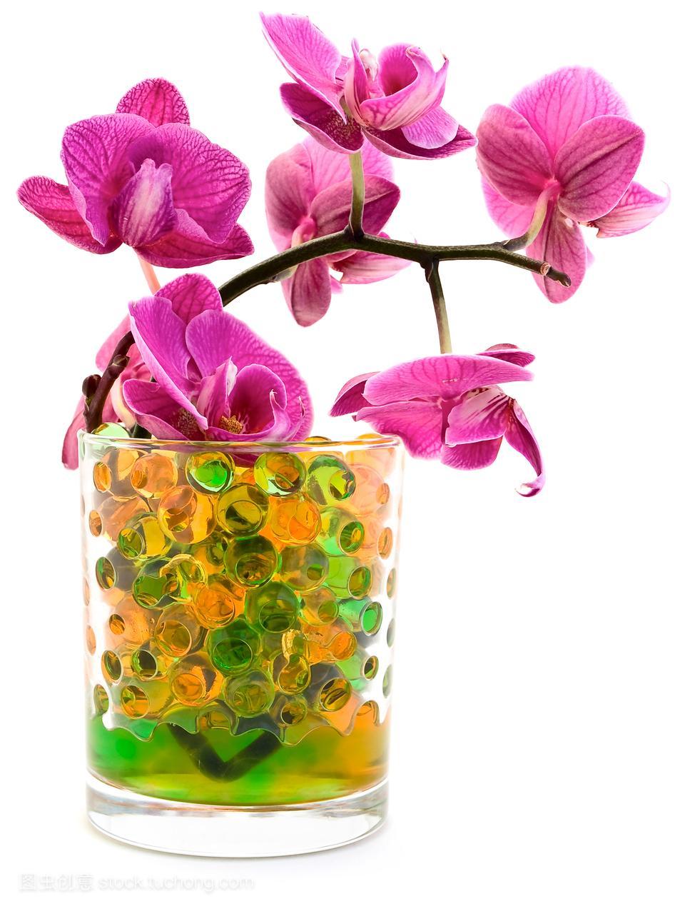 花束,花样,花神,装修,装饰的,花艺,花瓣,茎,装潢,