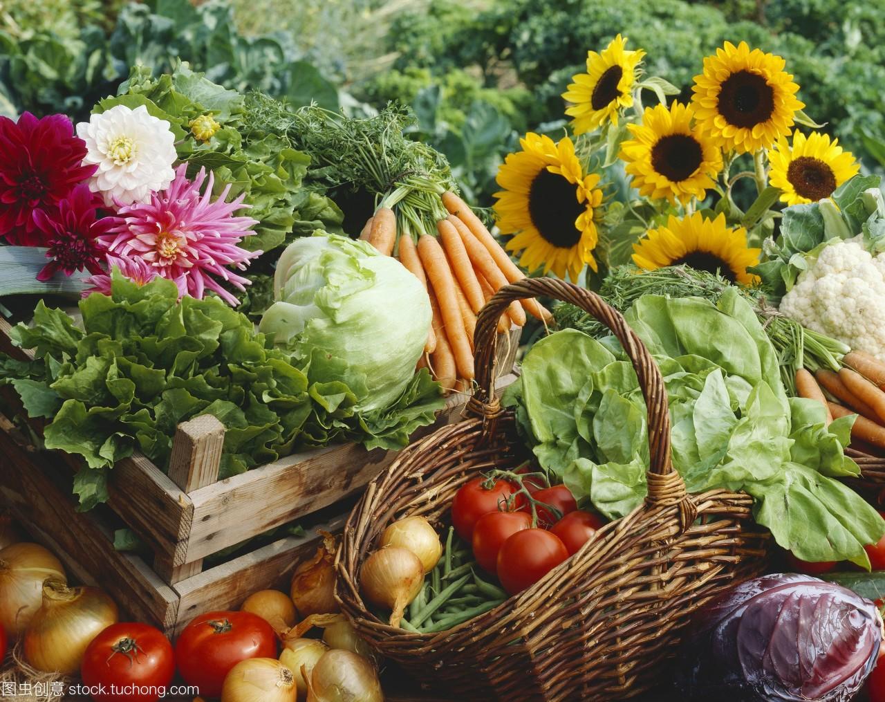 生活需要蔬菜,也需要鲜花