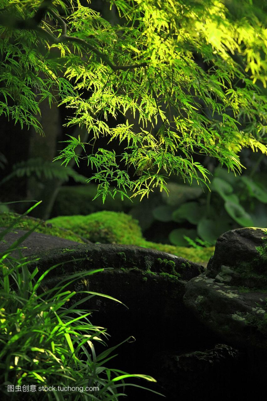 日本花园金泽市石川县日本本州岛