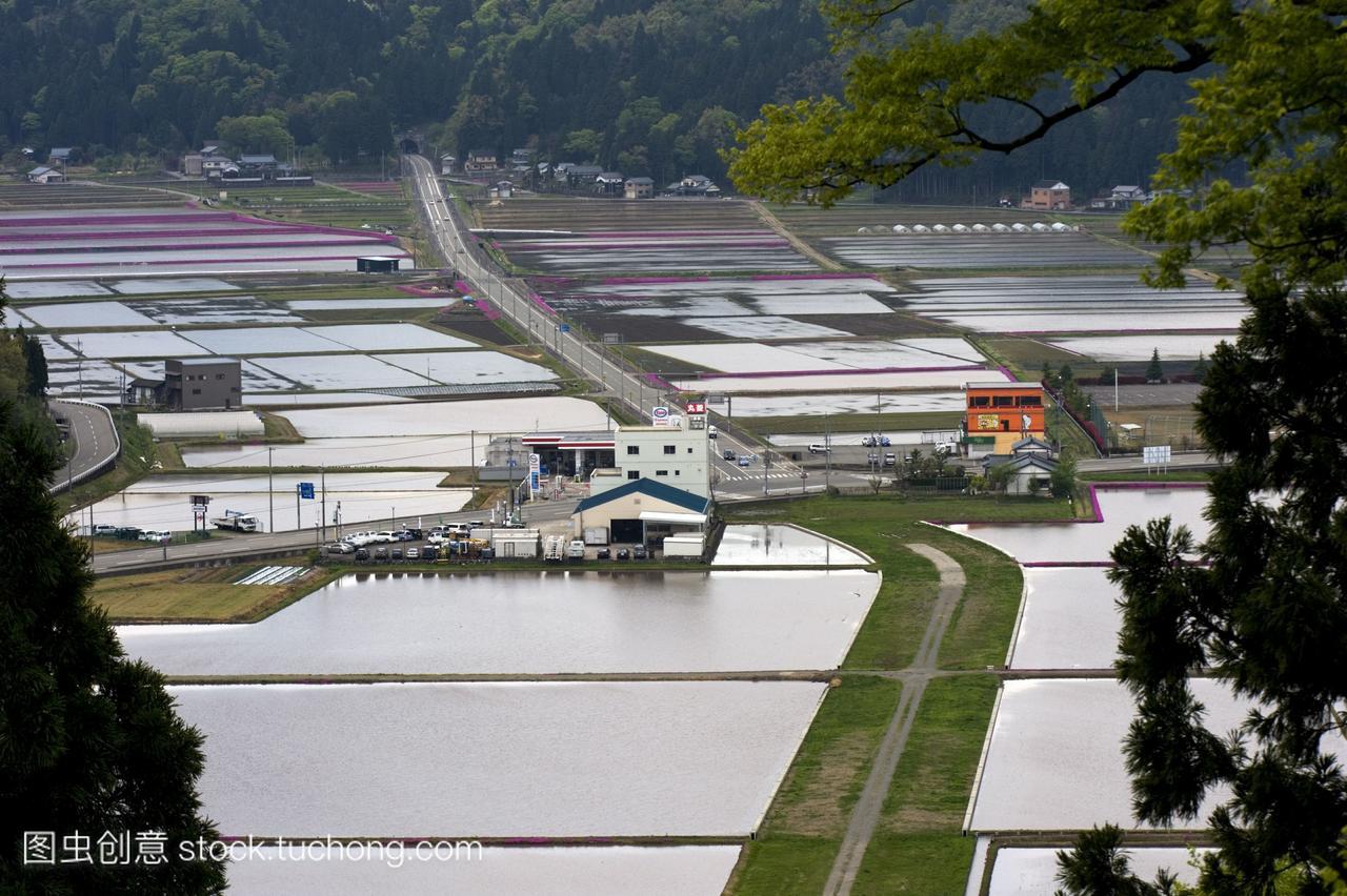 四月下旬,在日本福井县的坎米山山顶上,洪水泛
